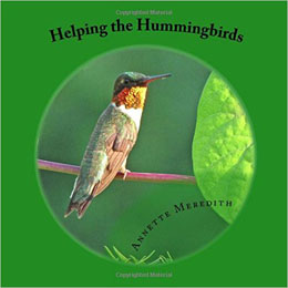 Helping the Hummingbirds
